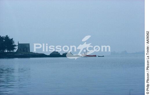 L\'île de Boëdic dans le Golfe du Morbihan. - AA06062 - Philip ...